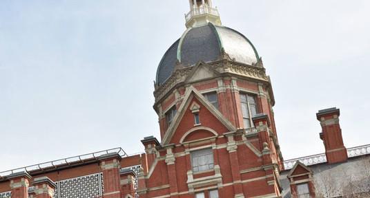 Hopkins dome